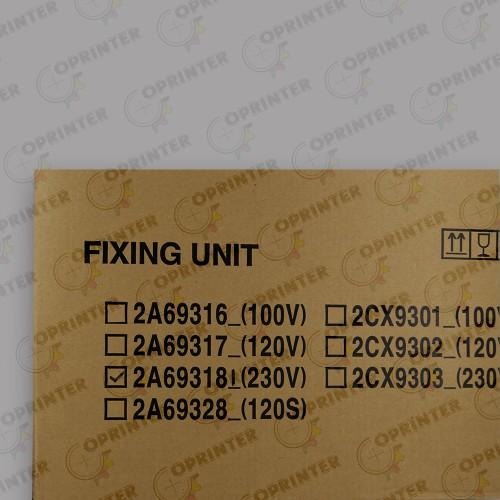 Fixing Unit 230 2A693181