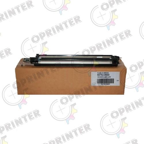 Узел проявки Xerox WC 7525-7556/7830-7855/7970 Phaser 7800 (607K10830)